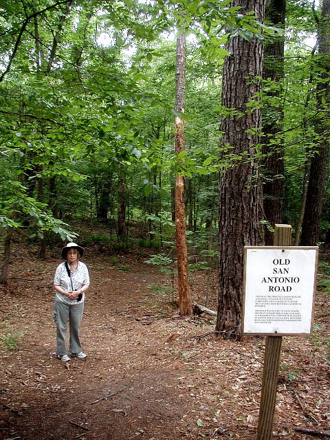 Caddo Lake Amp The Texas Piney Woods