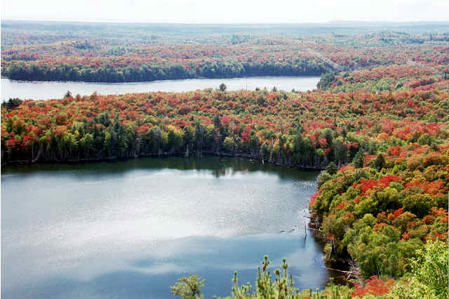 View from Elliot Lake Lookout Tower