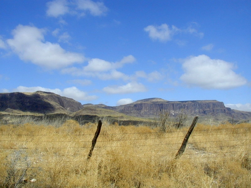 A last look at the Davis Mountains from TX-17