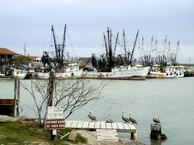 Texas rio grande valley for Port isabel fishing